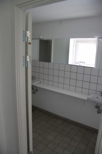 gf-toilet-1-2010